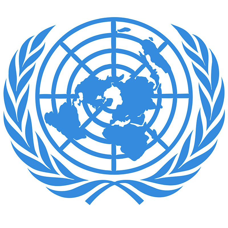 The UN launches the Sustainable Development Capital Initiative